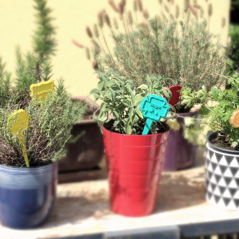 Capture d'écran 2017-05-12 à 19.46.33.png Download free STL file Aromatic herbal labels • Design to 3D print, Brignetti_Longoni
