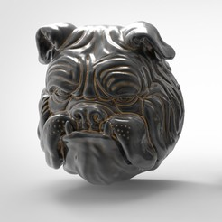 zz1.jpg Download STL file Bust Bull Dog • Object to 3D print, alexsaha