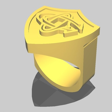 ChevalCO_4.jpg Download STL file Rugby knight Castres • 3D print object, maipourkoi
