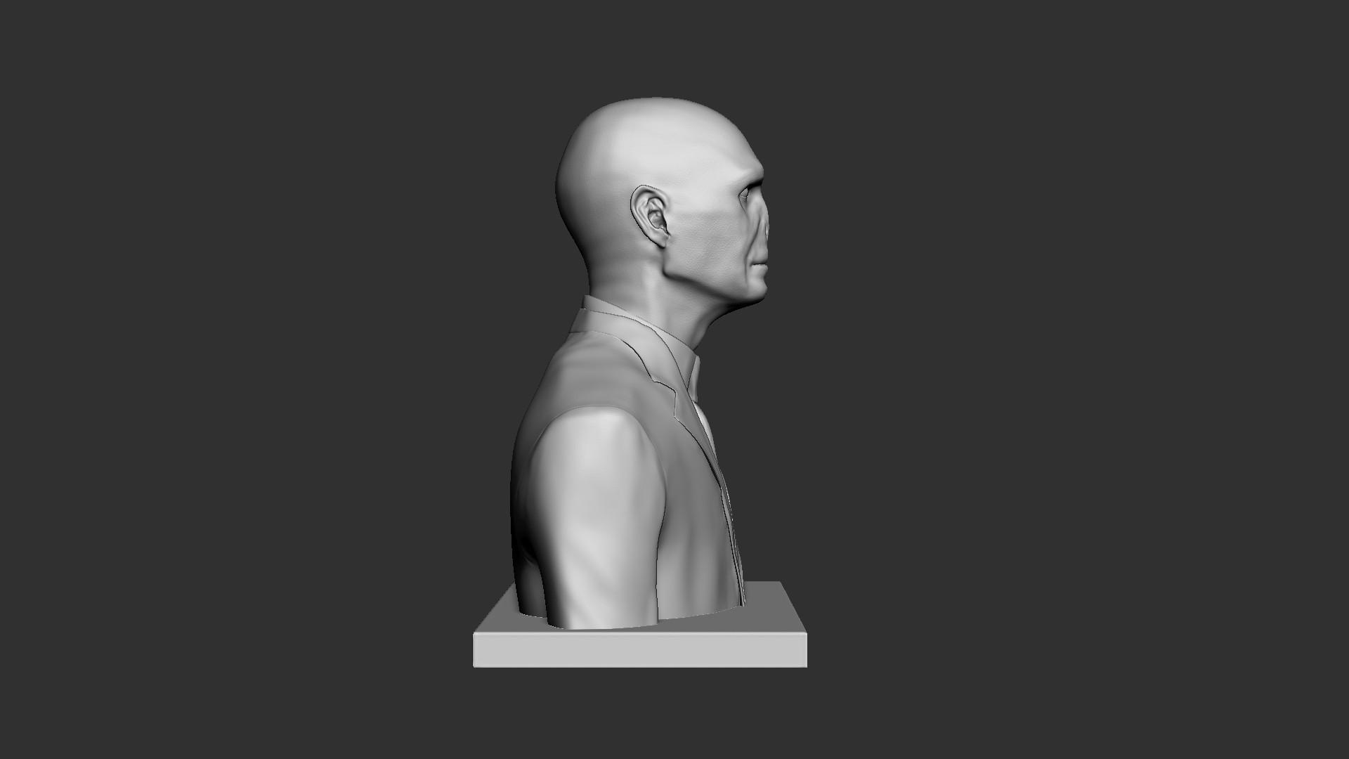 Voldemort_03.jpg Download OBJ file Voldemort Bust • 3D printing model, Ben_M