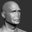 Voldemort_06.jpg Download OBJ file Voldemort Bust • 3D printing model, Ben_M