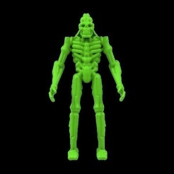 Download free 3D printer files Android Skeleton Figure, Michaelwhites