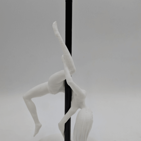 IMG_20190219_142116.png Download STL file Pole Dancer - Pen Holder • Object to 3D print, 3D-mon