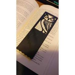 2c9c6035043821e3057b2fe49261991f_preview_featured.jpg Download STL file Owl Bookmark • 3D print model, ecelo