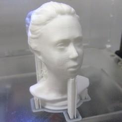Objet 3D gratuit Buste femelle, pauloblank