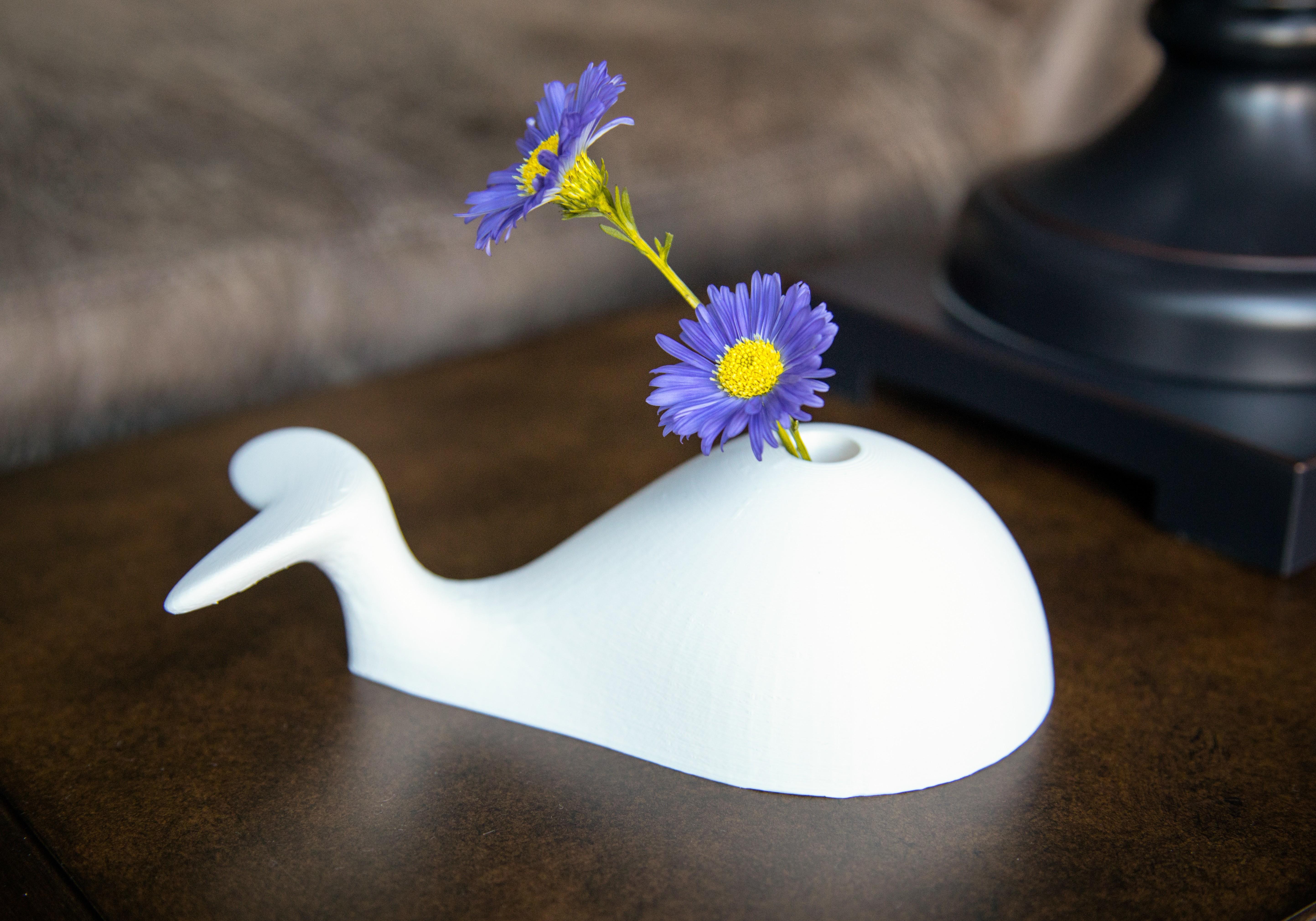 Whale_E.jpg Télécharger fichier STL gratuit Wally Whale Vase • Plan pour imprimante 3D, Xacto