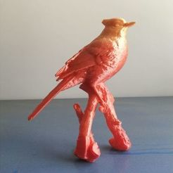Free 3D print files a bird blue jay, stronghero3d