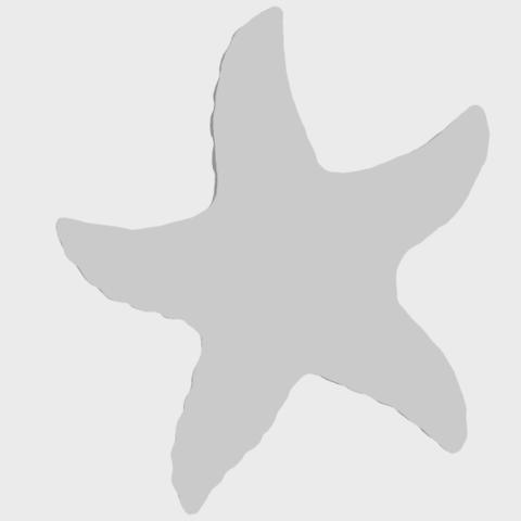 10_TDA0609_Starfish_03A06.png Télécharger fichier STL gratuit Étoile de mer 03 • Plan pour imprimante 3D, GeorgesNikkei