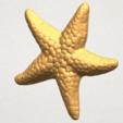 TDA0608 Starfish 02 A04.png Télécharger fichier STL gratuit Étoile de mer 02 • Plan pour impression 3D, GeorgesNikkei