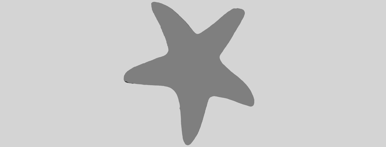 14_TDA0607_Starfish_01A07.png Télécharger fichier STL gratuit Étoile de mer 01 • Design à imprimer en 3D, GeorgesNikkei