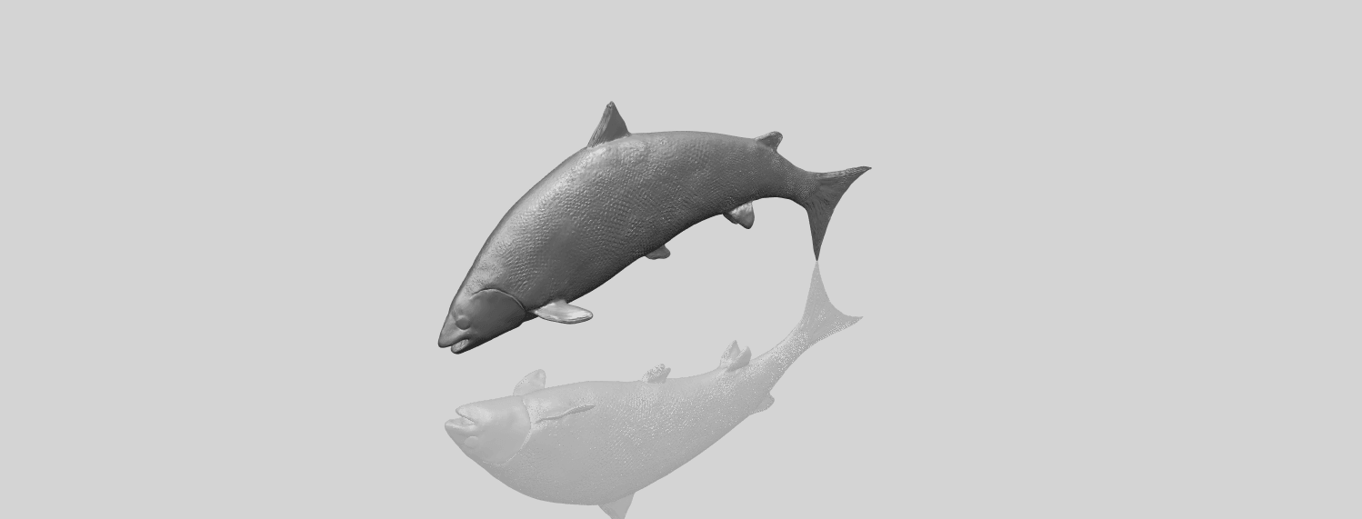 22_TDA0598_Fish_04A00-1.png Download free STL file  Fish 04 • 3D printable object, GeorgesNikkei