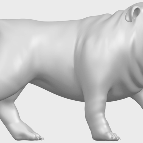 14_TDA0520_Bull_Dog_01A09.png Télécharger fichier STL gratuit Chien de taureau 01 • Plan pour impression 3D, GeorgesNikkei