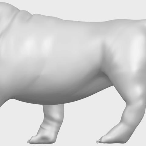 14_TDA0520_Bull_Dog_01A04.png Télécharger fichier STL gratuit Chien de taureau 01 • Plan pour impression 3D, GeorgesNikkei