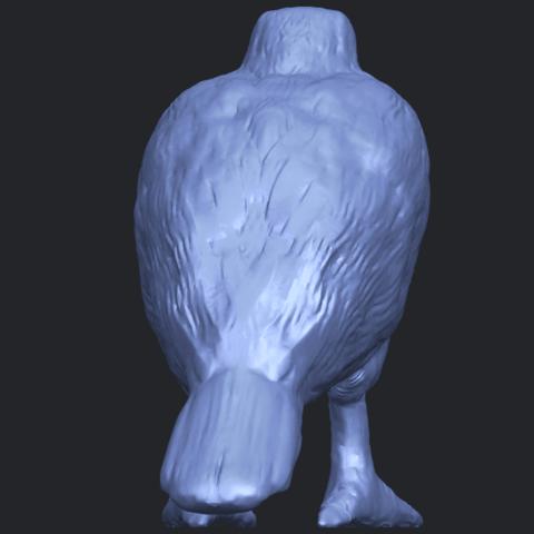 12_TDA0599_Eagle_02B04.png Download free STL file Eagle 02 • 3D printable design, GeorgesNikkei