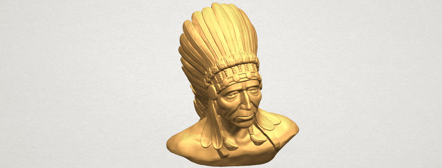 TDA0489 Red Indian 03 - Bust A08.png Download free STL file Red Indian 03 • 3D printer model, GeorgesNikkei