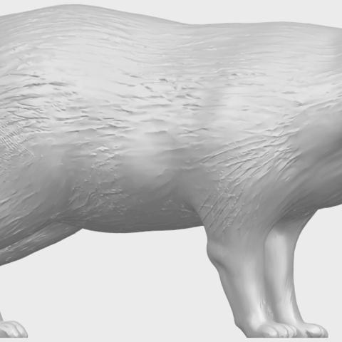 07_TDA0601_FoxA07.png Download free STL file Fox • 3D printer model, GeorgesNikkei