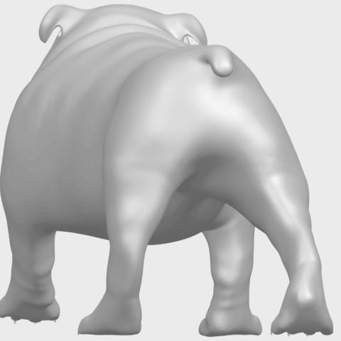 14_TDA0520_Bull_Dog_01A06.png Télécharger fichier STL gratuit Chien de taureau 01 • Plan pour impression 3D, GeorgesNikkei