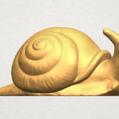 Free 3d printer designs Snail, GeorgesNikkei