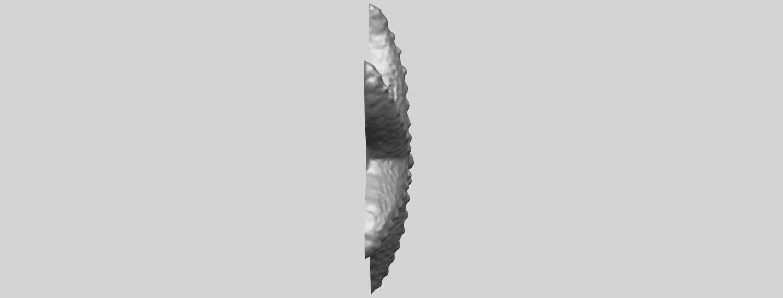 10_TDA0609_Starfish_03A09.png Télécharger fichier STL gratuit Étoile de mer 03 • Plan pour imprimante 3D, GeorgesNikkei