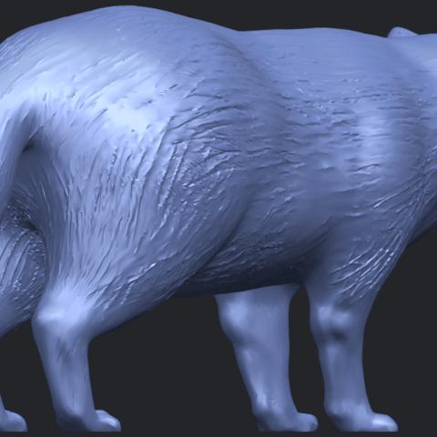 07_TDA0601_FoxB05.png Download free STL file Fox • 3D printer model, GeorgesNikkei