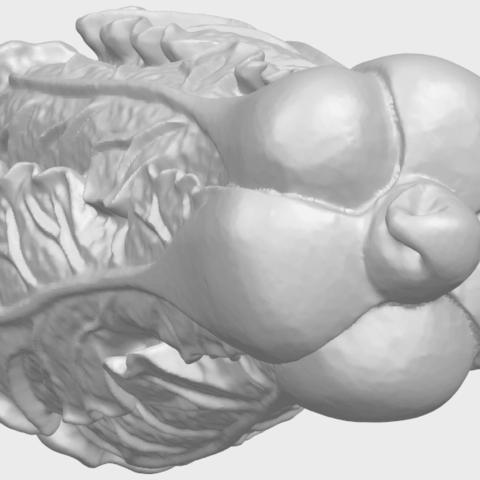 03_TDA0497_Vegetable_Fatt_Choi_03A03.png Download free STL file Vegetable - Fatt Choi • 3D printable object, GeorgesNikkei