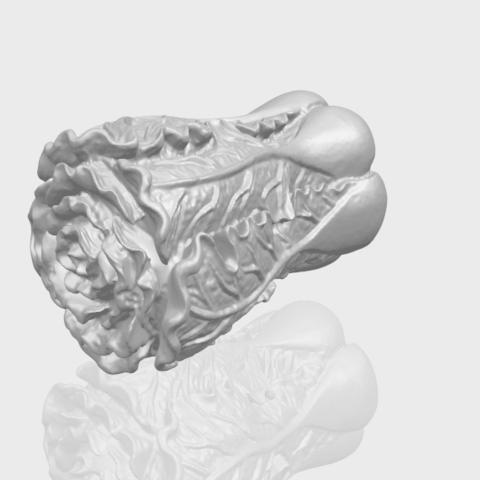 03_TDA0497_Vegetable_Fatt_Choi_03A00-1.png Download free STL file Vegetable - Fatt Choi • 3D printable object, GeorgesNikkei