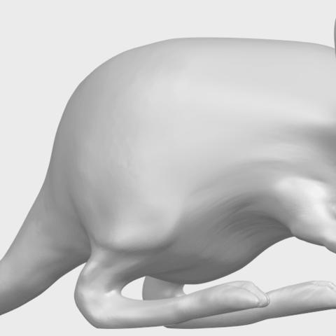 TDA0756_Rat_01A07.png Télécharger fichier STL gratuit Rat 01 • Plan pour impression 3D, GeorgesNikkei
