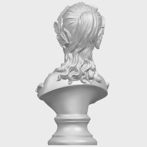 12_Bust_of_Venus_80mmA06.png Download free STL file Bust of Venus • 3D print model, GeorgesNikkei