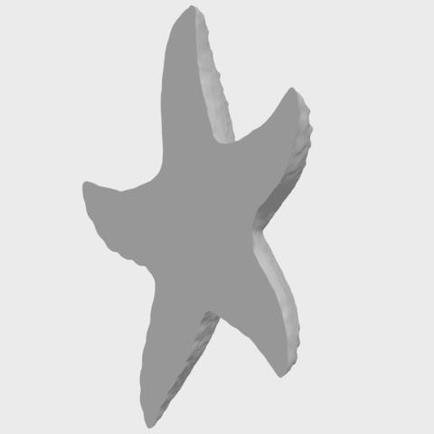 10_TDA0609_Starfish_03A08.png Télécharger fichier STL gratuit Étoile de mer 03 • Plan pour imprimante 3D, GeorgesNikkei