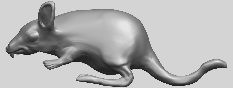 TDA0756_Rat_01A01.png Télécharger fichier STL gratuit Rat 01 • Plan pour impression 3D, GeorgesNikkei