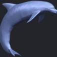 27_TDA0613_Dolphin_03B07.png Télécharger fichier STL gratuit Dauphin 03 • Objet pour impression 3D, GeorgesNikkei