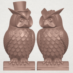 A Pair of Owl Male and Female 3D model, Miketon