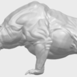 15_TDA0744_Bear_02A01.png Download free STL file  Bear 02 • 3D print model, GeorgesNikkei
