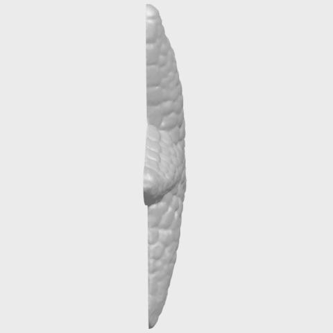 12_TDA0608_Starfish_02A09.png Télécharger fichier STL gratuit Étoile de mer 02 • Plan pour impression 3D, GeorgesNikkei