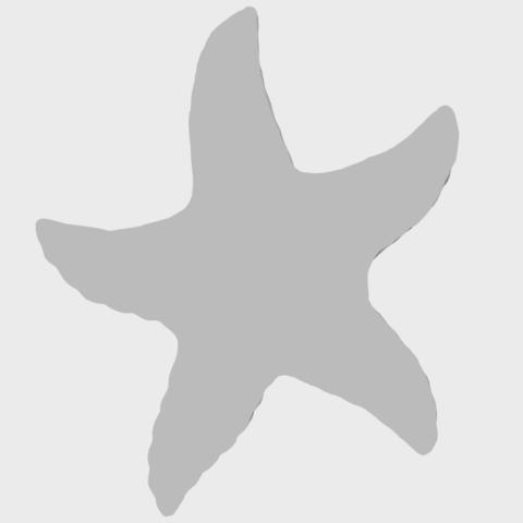 10_TDA0609_Starfish_03A07.png Télécharger fichier STL gratuit Étoile de mer 03 • Plan pour imprimante 3D, GeorgesNikkei