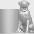 Download free 3D printer designs Dog 03, GeorgesNikkei
