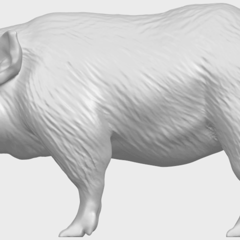 13_TDA0320_Pig_ii_A01.png Download free STL file Pig 02 • 3D printable object, GeorgesNikkei