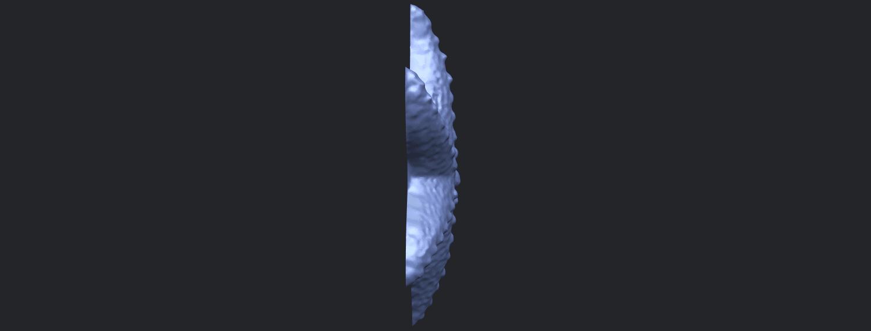 10_TDA0609_Starfish_03B09.png Télécharger fichier STL gratuit Étoile de mer 03 • Plan pour imprimante 3D, GeorgesNikkei