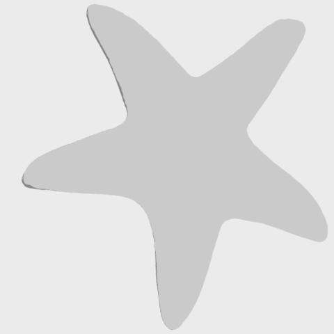14_TDA0607_Starfish_01A06.png Télécharger fichier STL gratuit Étoile de mer 01 • Design à imprimer en 3D, GeorgesNikkei