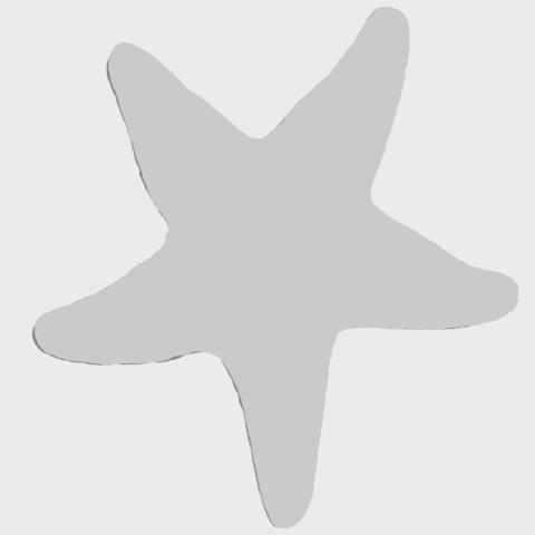 12_TDA0608_Starfish_02A06.png Télécharger fichier STL gratuit Étoile de mer 02 • Plan pour impression 3D, GeorgesNikkei