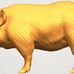 Free 3D printer model Pig 02, GeorgesNikkei