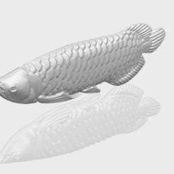 STL Fish 01, Miketon