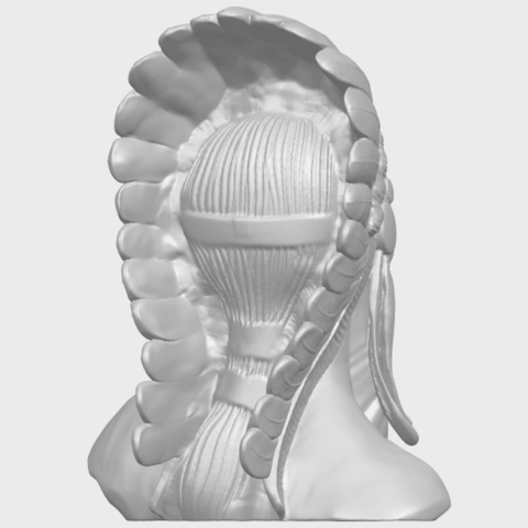 09_TDA0489_Red_Indian_03_BustA07.png Download free STL file Red Indian 03 • 3D printer model, GeorgesNikkei