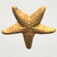 TDA0608 Starfish 02 A05.png Télécharger fichier STL gratuit Étoile de mer 02 • Plan pour impression 3D, GeorgesNikkei