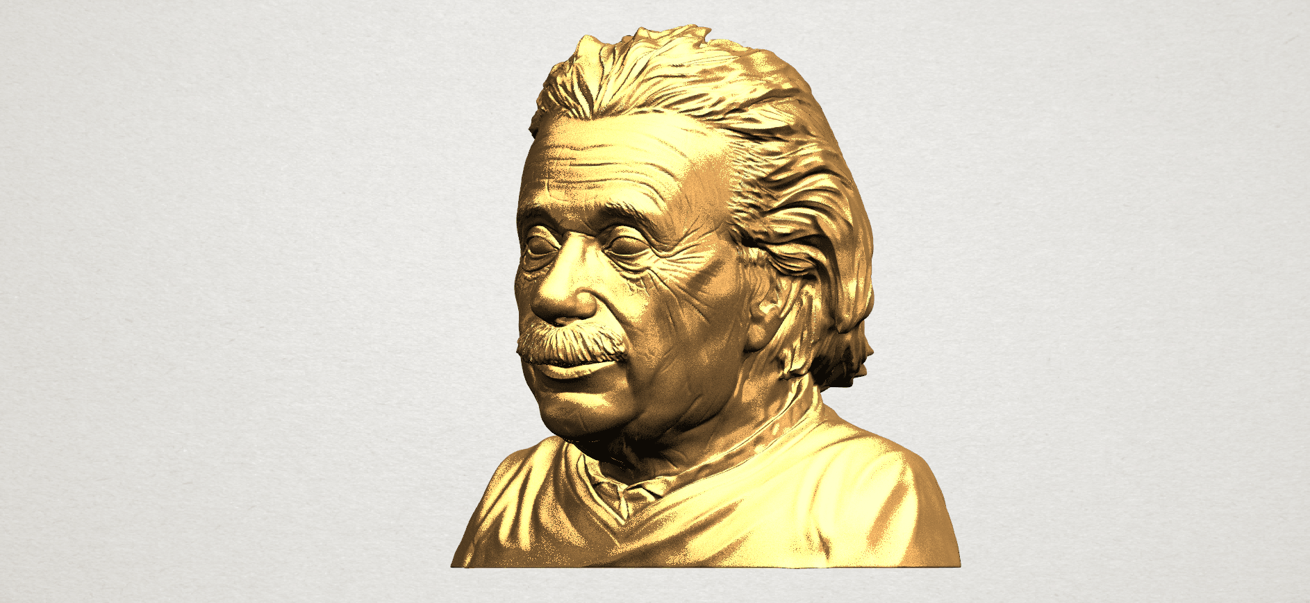 Einstein A02.png Download free STL file Einstein • 3D printer template, GeorgesNikkei