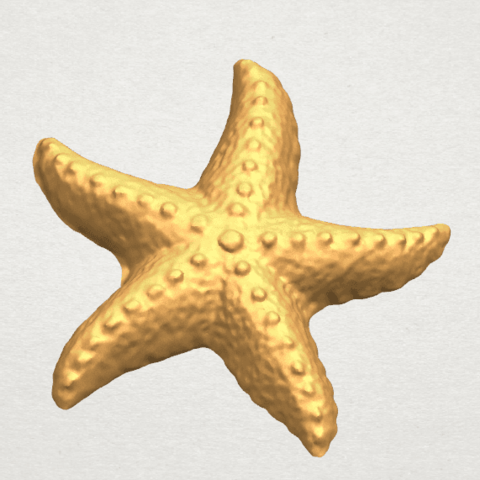 TDA0609 Starfish 03 A02.png Télécharger fichier STL gratuit Étoile de mer 03 • Plan pour imprimante 3D, GeorgesNikkei