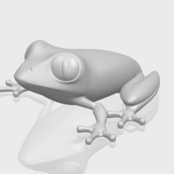 Free 3D print files Frog, GeorgesNikkei
