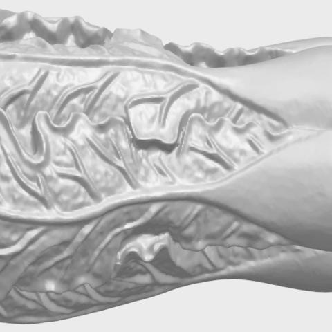 03_TDA0497_Vegetable_Fatt_Choi_03A01.png Download free STL file Vegetable - Fatt Choi • 3D printable object, GeorgesNikkei