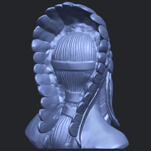 09_TDA0489_Red_Indian_03_BustB07.png Download free STL file Red Indian 03 • 3D printer model, GeorgesNikkei