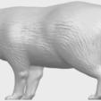 07_TDA0601_FoxA02.png Download free STL file Fox • 3D printer model, GeorgesNikkei
